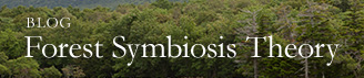 BLOG Forest Symbiosis Theory